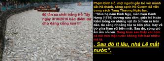 60-tan-ca-chet-trang-ho-tay-11111111111-copy