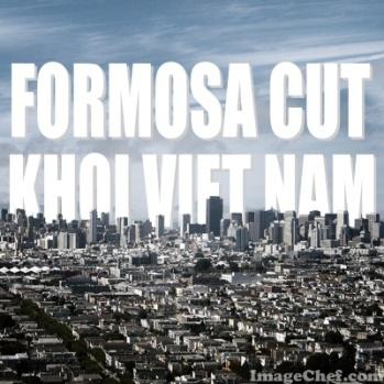 FORMOSA CUT KHOI VIET NAM 1