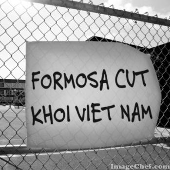 FORMOSA CUT KHOI VIET NAM PANO