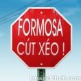 FORMOSA CÚT XÉO 12