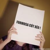 FORMOSA CÚT XÉO 3