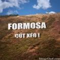 FORMOSA CÚT XÉO